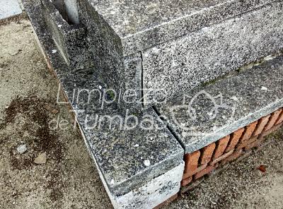 limpieza tumbas madrid