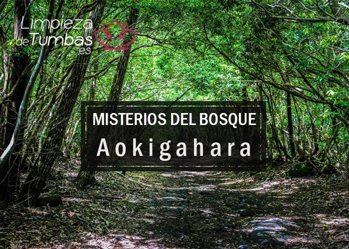misterios bosque okigahara