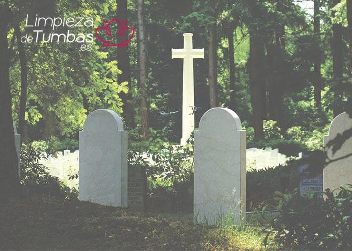musgo y liquenes tumbas