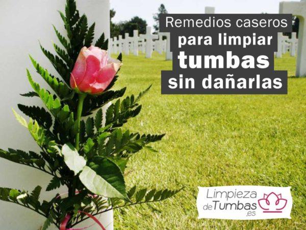 remedios-caseros-para-limpiar-tumbas