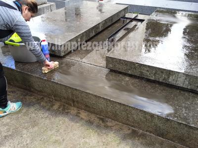 Limpieza San Isidro