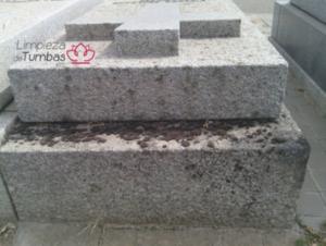 limpieza tumbas en mal estado